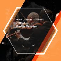 Bach Violin Concerto in A minor